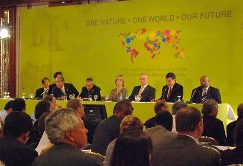 Mayors Conference - Local Action for Biodiversity (parallel event to the COP 9 meeting) © CBD