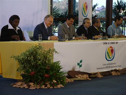 March 2007 Curitiba - Opening ceremony