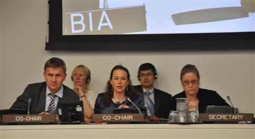 UNGA-65 High Level Meeting on Biodiversity Secretariat of the Convention on Biological Diversity