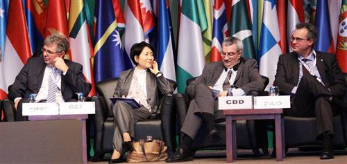 UNFF 10th session in Istanbul, Turkey IISD - Franz Dejon