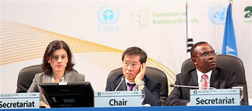 Special Session on Implementation of the Protocol IISD (http://www.iisd.ca/biodiv/bs-copmop7/29sep.html)
