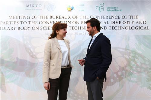 Joint meeting of the COP and SBSTTA Bureaux - Mexico City, Mexico UCAI-SEMARNAT