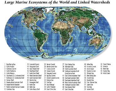 Large Marine Ecosystems
