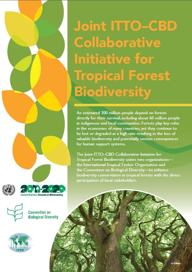 Joint ITTO–CBD Collaborative Initiative for Tropical Forest Biodiversity