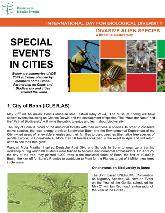 Special Events in Cities