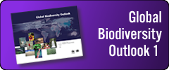 Global Biodiversity Outlook 1