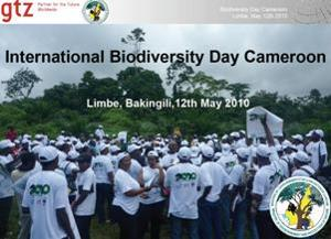 International Day of Biodiversity 2010, in Bakingili, Cameroon