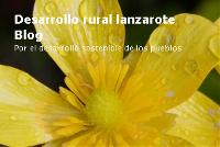 Desarrollo rural lanzarote Blog