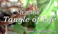 Tangle of Life