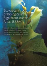 Ecologically or Biologically Significant Marine Areas (EBSAs)