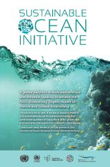 Sustainable Ocean Initiative