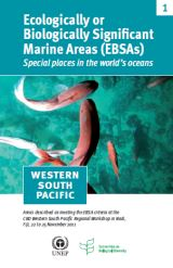 Ecologically or Biologically Significant Marine Areas (EBSAs) - Western South Pacific