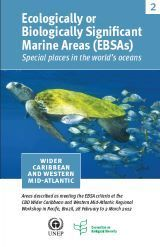 Ecologically or Biologically Significant Marine Areas (EBSAs) - Wider Caribbean and Western Mid-Atlantic