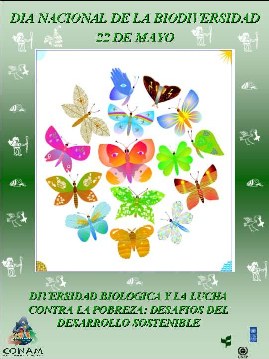 DIA De La Biodiversidad