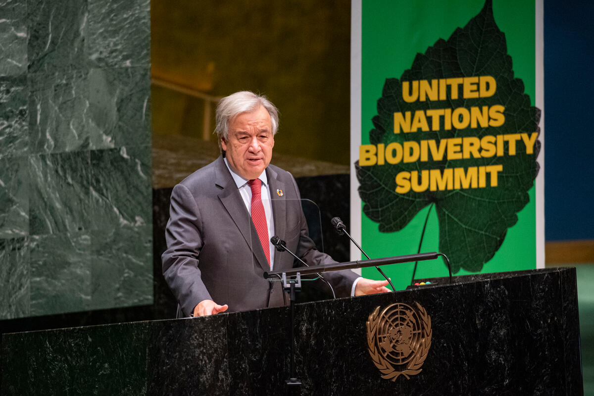 Secretary-General António Guterres prepares to address the United Nations Summit on Biodiversity. Source: UN Photo/Rick Bajornas