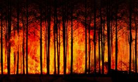 Foreset Fire Climate  Change