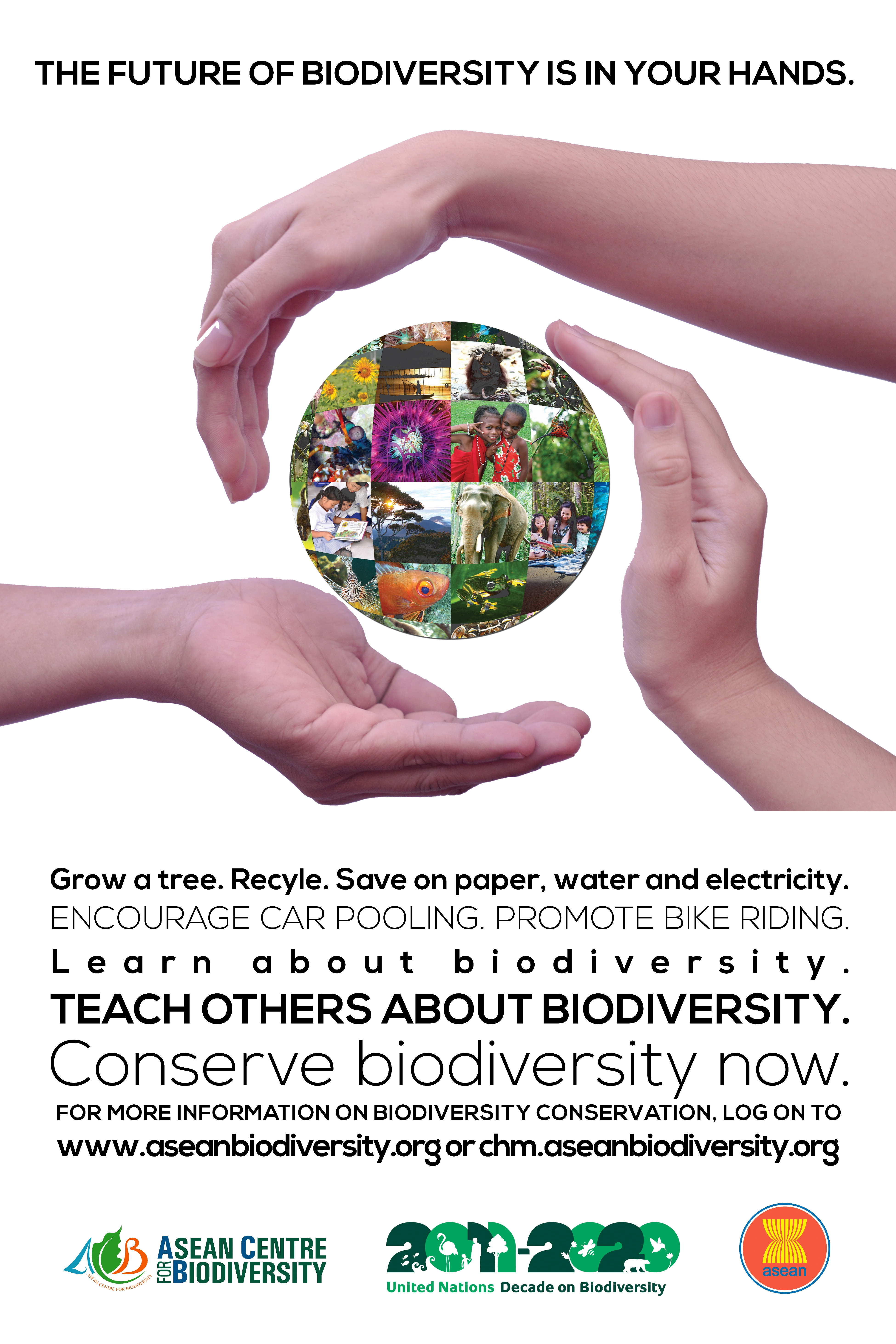 essay on biodiversity conservation and environment