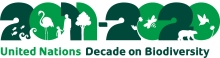 2011-2020 United Nations Decade on Biodiversity